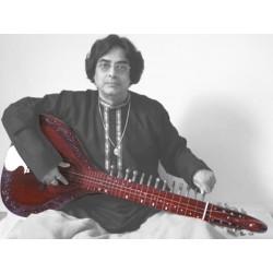 Pro-Grade Hansa Veena (Mohan Veena Variation) Cedar Wood Slide Guitar-Sitar Fusion, Acoustic Electric