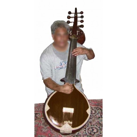 Sursringar Sur Sringar: Rare Indian Bass Sarod. Pro-Grade Calcutta Instrument